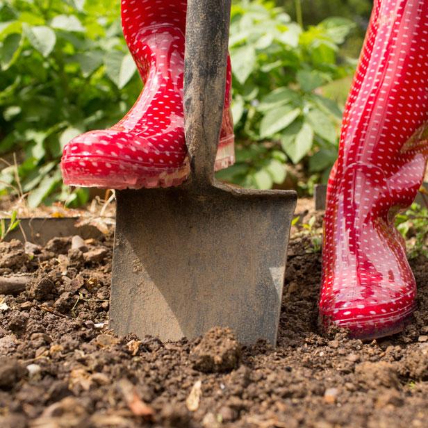 Photo d'une personne qui creuse dans son terrain avec une pelle dans ses bottes de pluies rouges