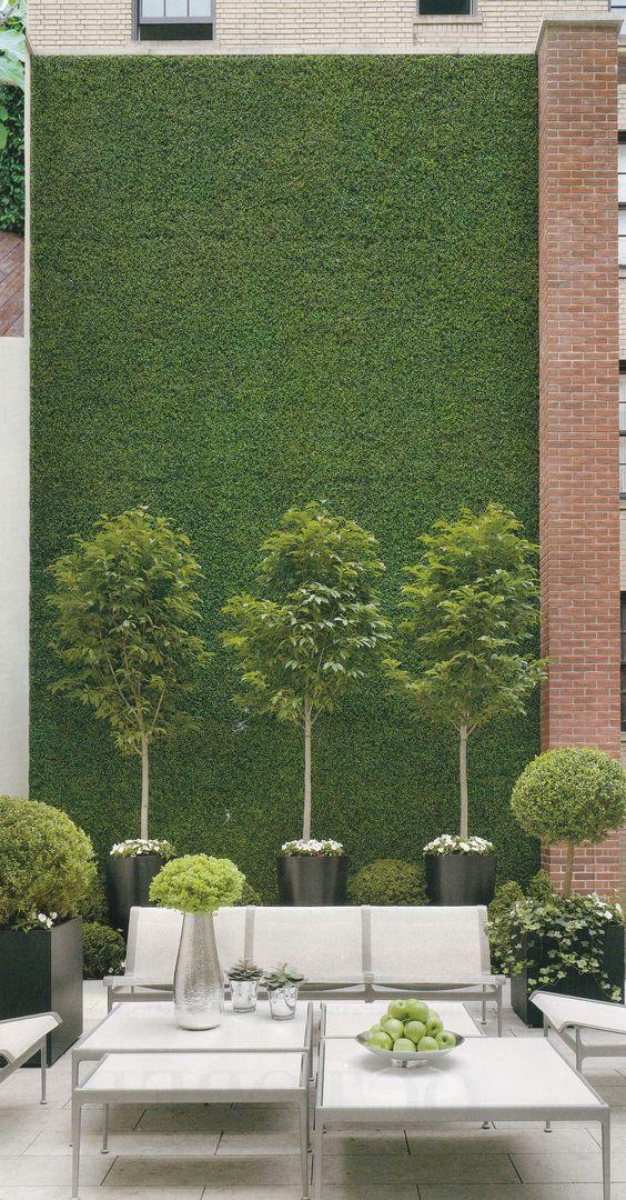 Pots géants à arbustes avec cèdres