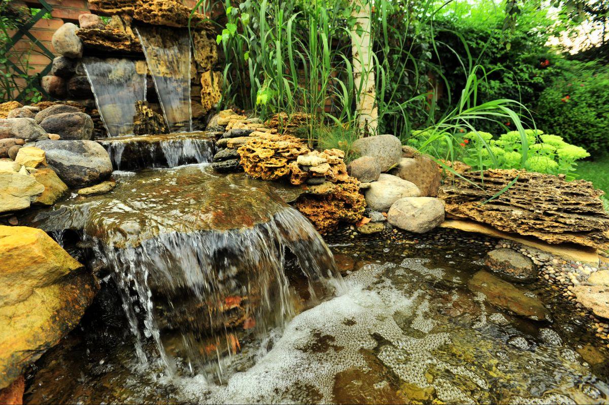 Un jardin d'eau dans votre cour : quel beau projet estival!