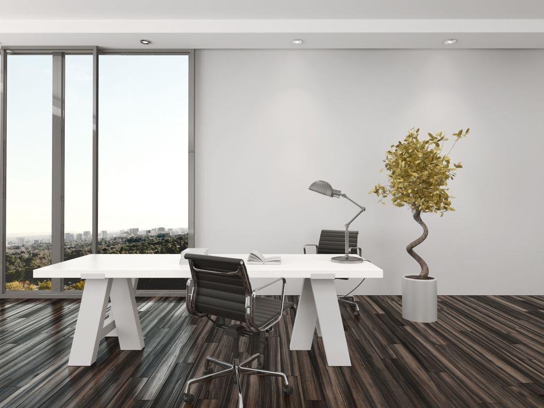 Petit bureau décoré avec inspiration de minimalisme