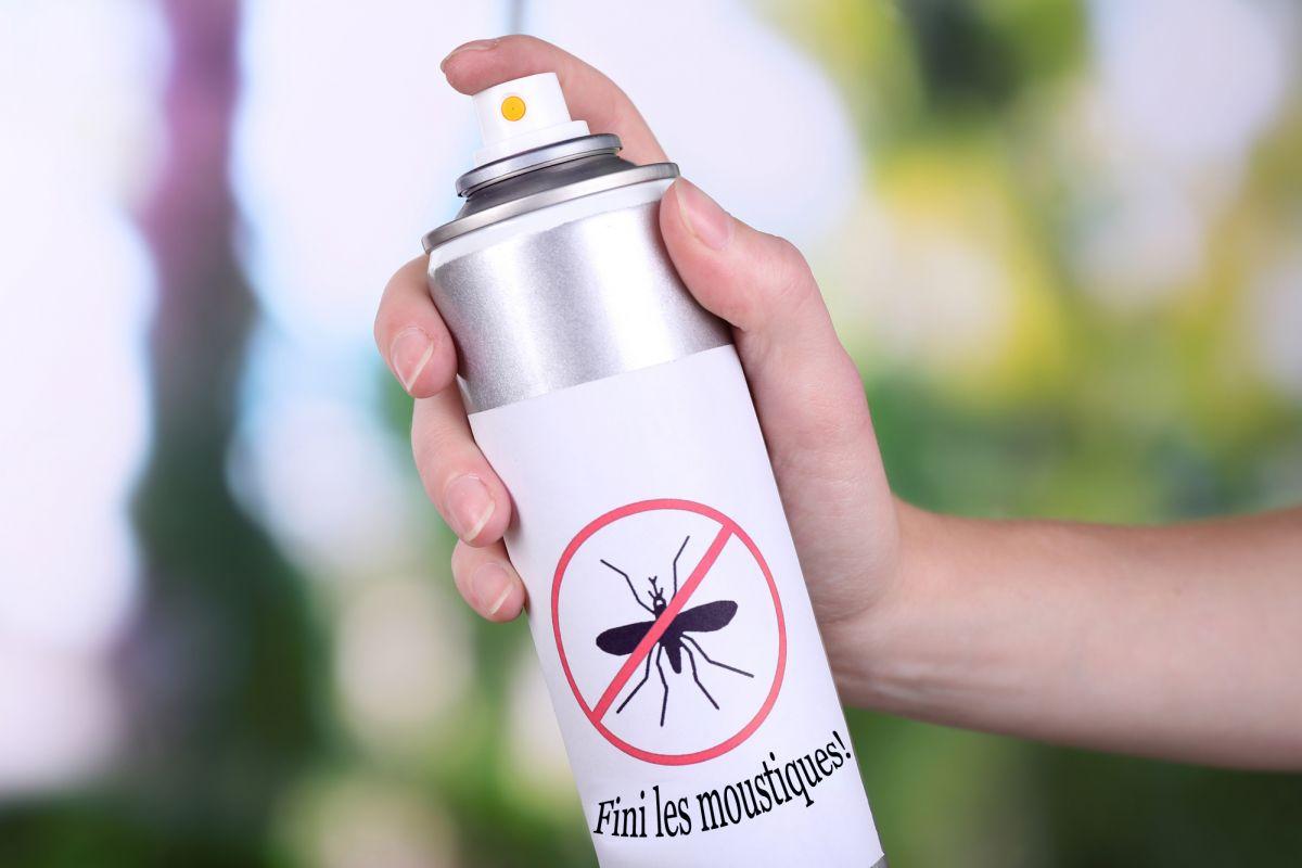 Ne laissez pas les moustiques gâcher vos randonnées en forêt!