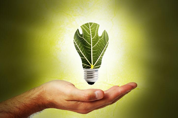 Envie d'une maison plus verte sans y mettre trop d'efforts?