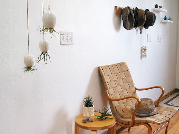 Mini pot suspendu avec cactus renversés