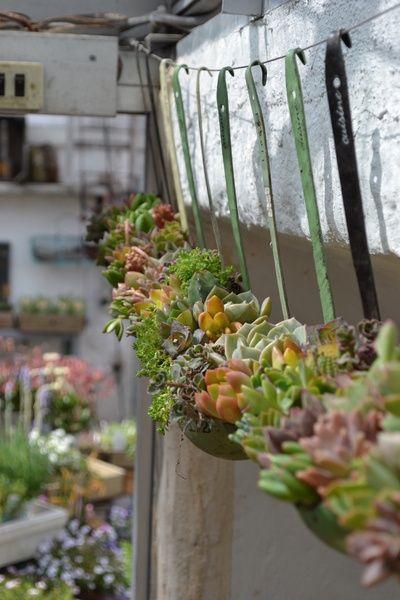 Arrangement floral avec louche recyclé en pot à fleur