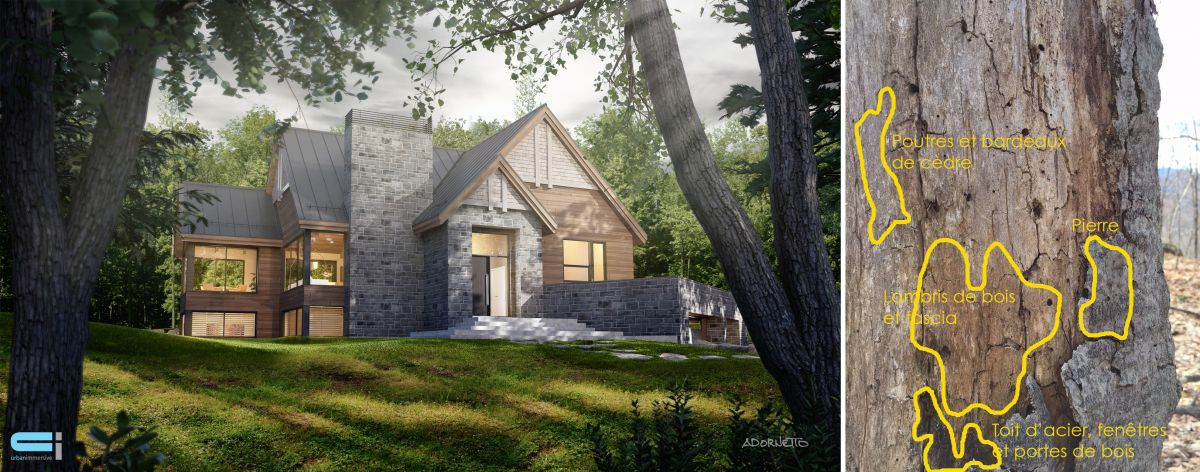 Magnifique maison en bois et pierre des champs