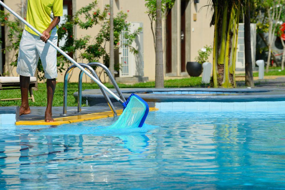 Nettayage de sa piscine avec la puise à feuille morte