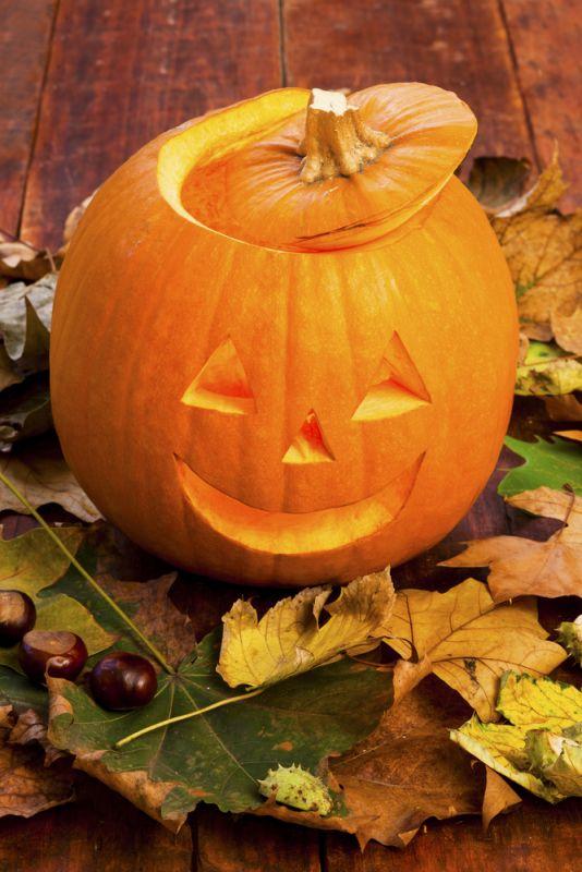 Dans tous les cas conservez la chair et réservez la pour préparer de délicieuses recettes gourmandes par exemple la classique pumpkin pie ou la soupe au