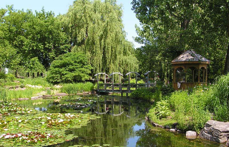 Petit pont sur étang au Centre de la Nature
