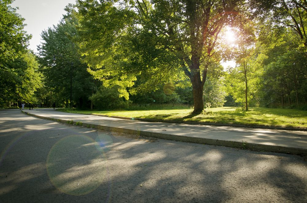 Un des nombreaux parcs de l'île de Montréal