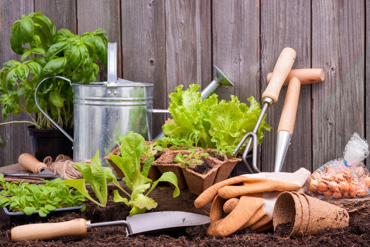 Équipement et nécéssaire de jardinage