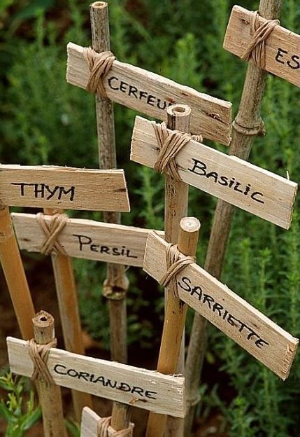 Petite affiche de jardin pour identifier les plants ou fines herbes