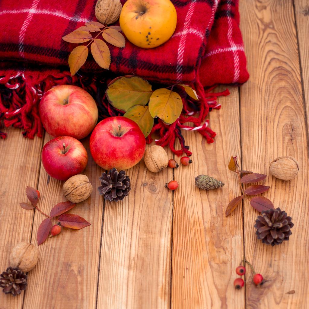 Image des aliments d'automne