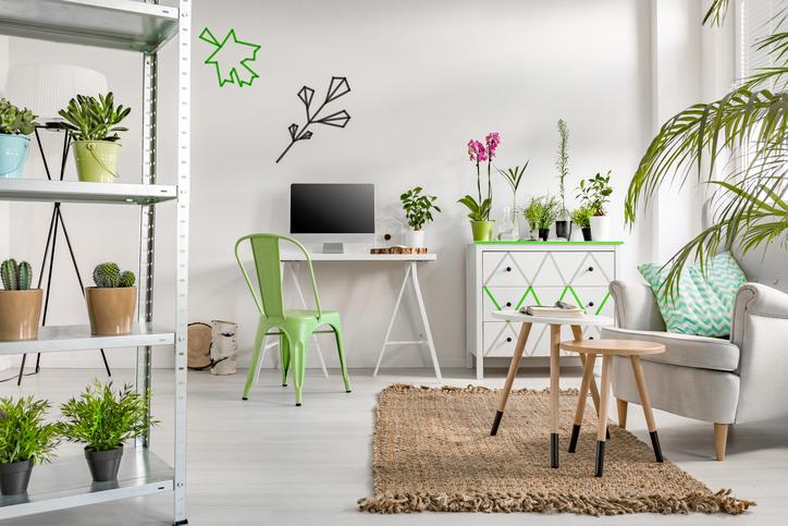 Décorations vertes dans un décors blanc