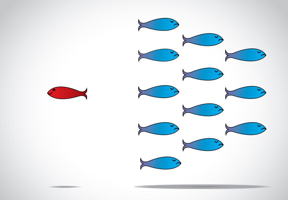 Trucs et conseils : se démarquer grâce à une approche marketing efficace sur les médias sociaux