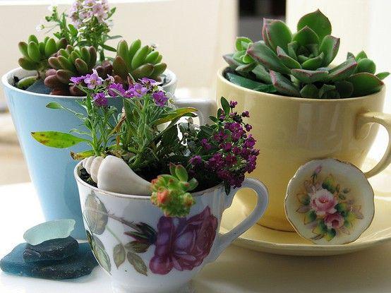 Tasse à café recyclé en pot à fleur
